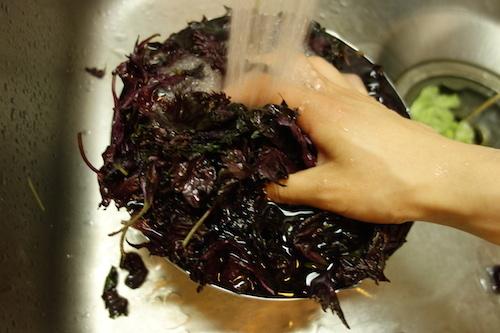 赤紫蘇ジュース06
