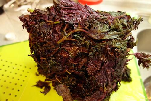 赤紫蘇ジュース02