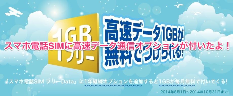 日本通信B-MOBILE高速データ通信オプション1