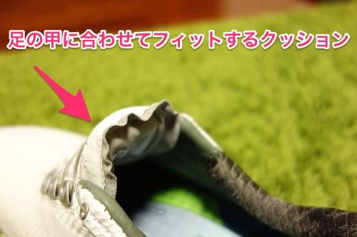 footjoy_DNA_boa03