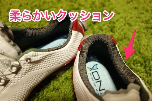 footjoy_DNA_boa04